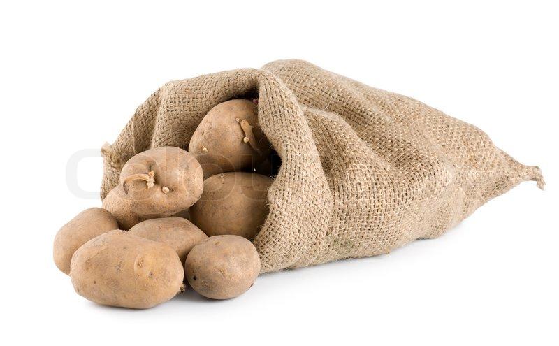 rohe kartoffeln in einem jutesack auf einem wei en. Black Bedroom Furniture Sets. Home Design Ideas