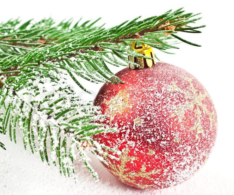 weihnachten und neujahr dekorationen tanne schnee zweig mit dekoration auf wei em hintergrund. Black Bedroom Furniture Sets. Home Design Ideas