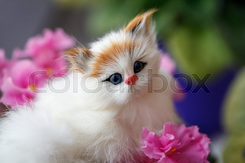 Portrait of little puppet, a toy cat in pink flowers, closeup, stock photo