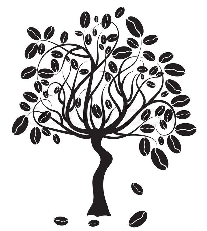 Coffee Tree Vector Illustration Stock Vector Colourbox