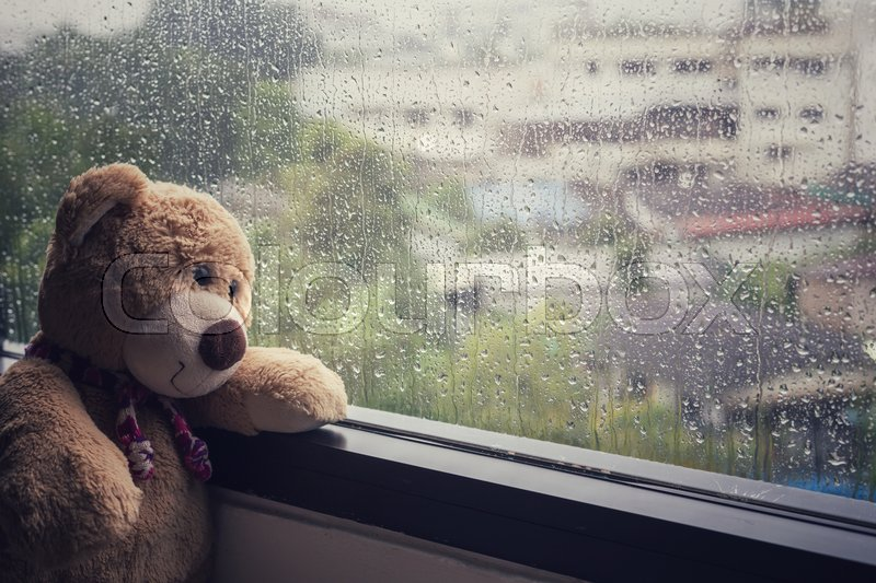 brown teddy bear sitting beside the window while raining stock