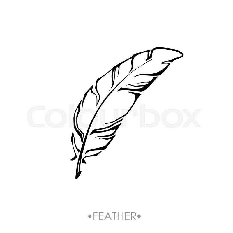 Boho feather hand drawn effect vector Stock Vector