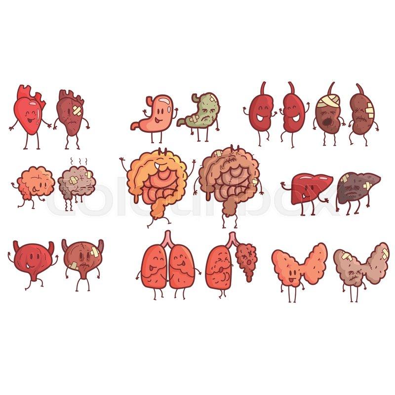 Human Internal Organs Healthy Vs Unhealthy Set Of Medical Anatomic ...