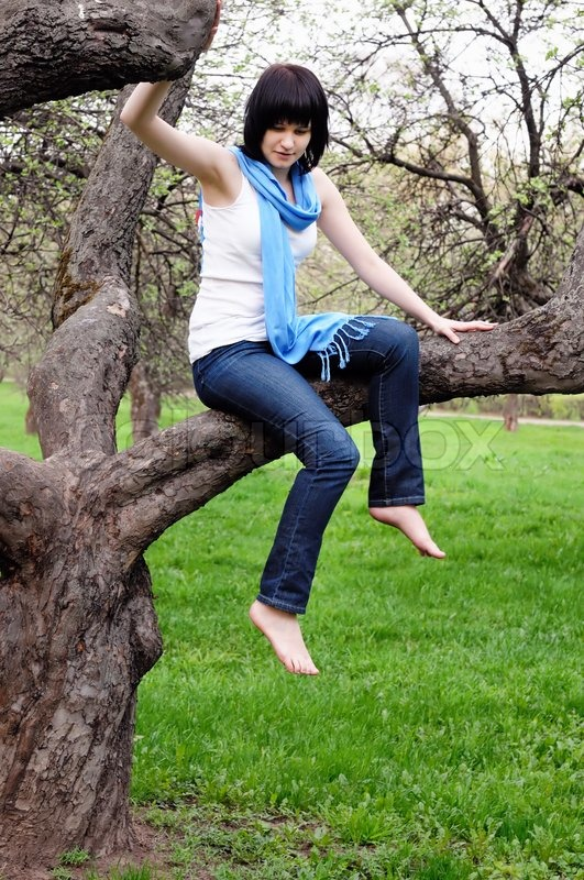 Attractive Girl Sitting On A Tree Stock Photo Colourbox