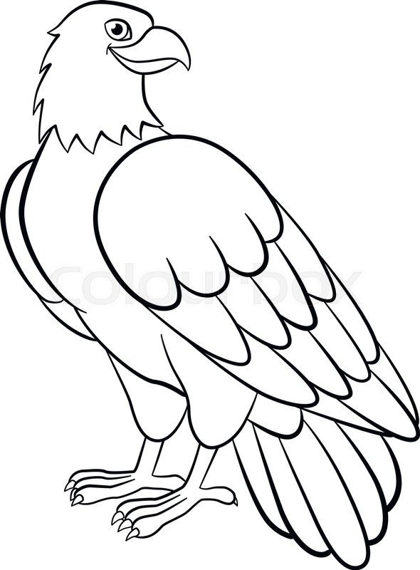Bald Eagle Coloring Pages Tag: 21 Incredible Cartoon Eagle ... | 800x590