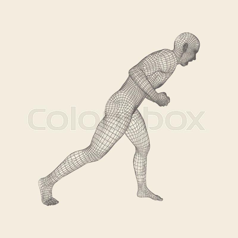 Fighter. Fitness sports. Martial arts. 3D Model of Man. Human Body. Sports Symbol. Design Element. Grid Vector Illustration, vector