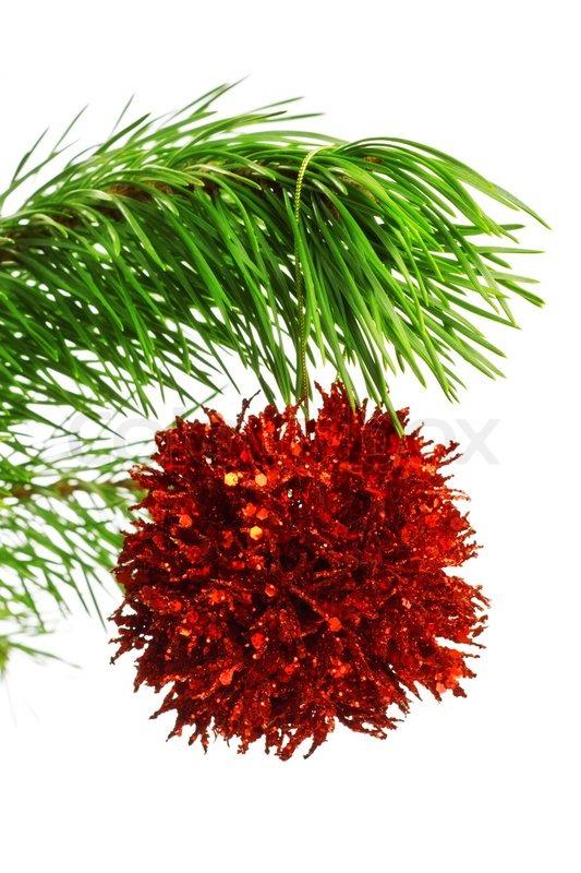 Rote dekoration ball auf tannenzweig stockfoto colourbox for Rote dekoration