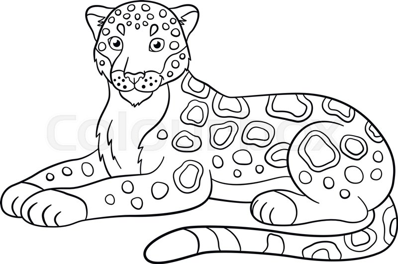 Coloring Pages Cute Jaguar Lays And Stock Vector Colourbox