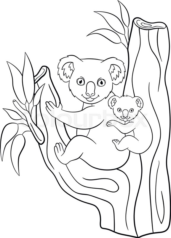 Coloring Pages  Mother Koala With Her