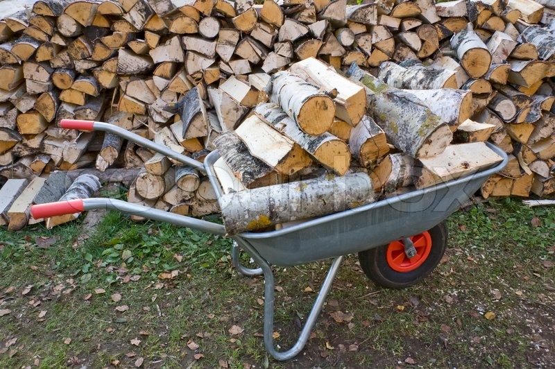 Stock image of 'Garden Wheelbarrow with Chopped birch fire wood'