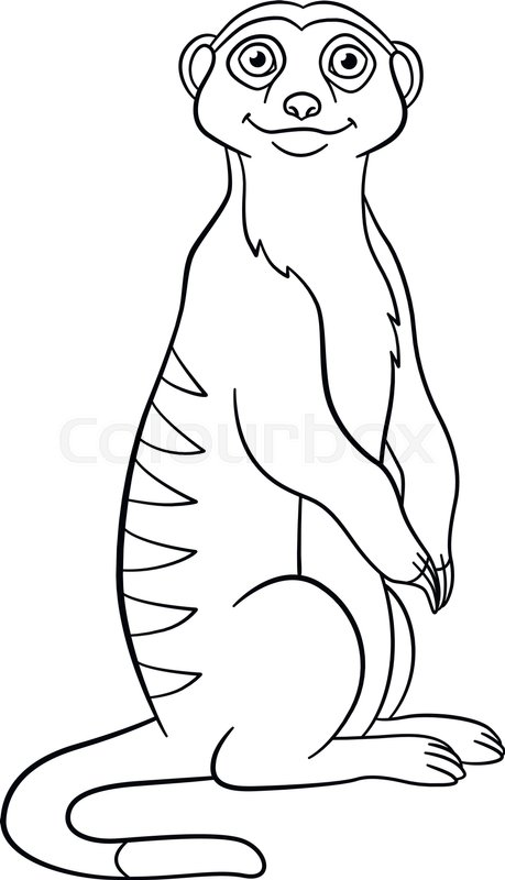 Coloring pages Little cute meerkat Stock vector