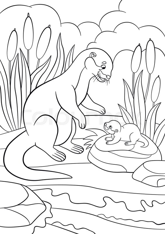 Coloring Pages. Two Little Cute Otters Swim Stock Vector ...   800x565