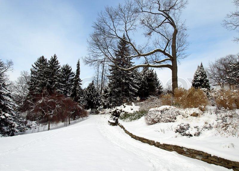 Winter Garden Snow Scene With Park Bench Stock Photo
