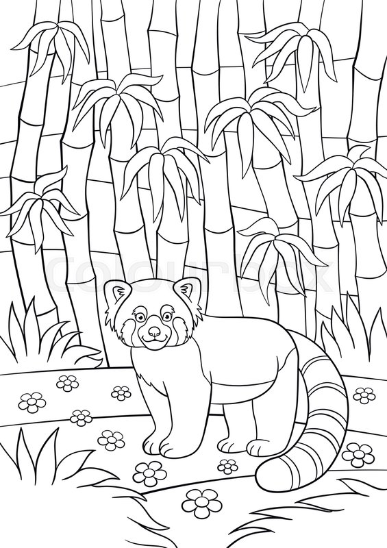 Coloring pages little cute red panda stands in the bamboo forest and smiles stock vector colourbox