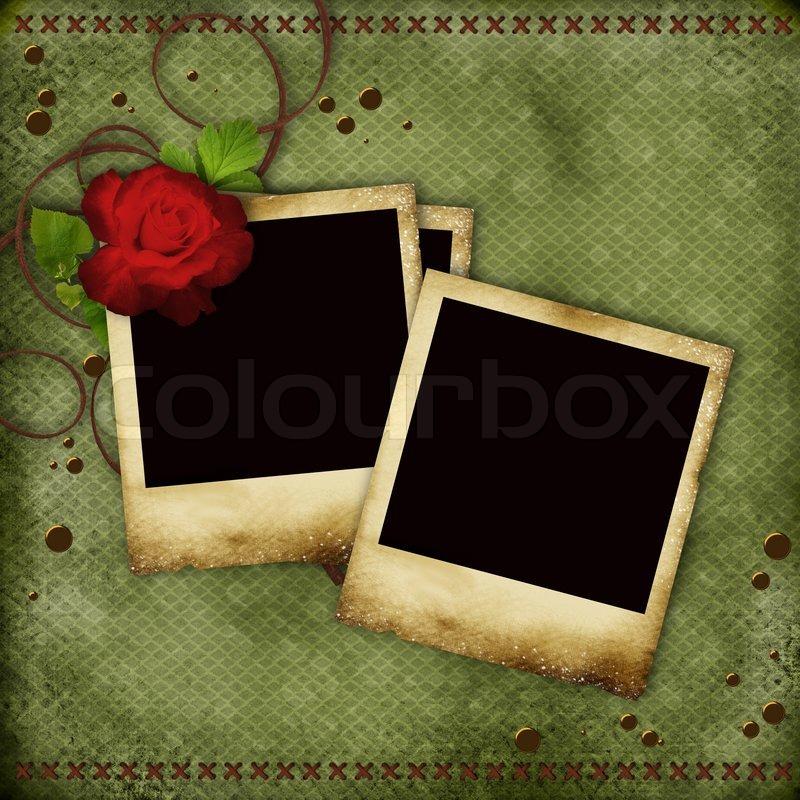Vintage -kort med redrose og gamle rammer til fotos | stock foto | Colourbox