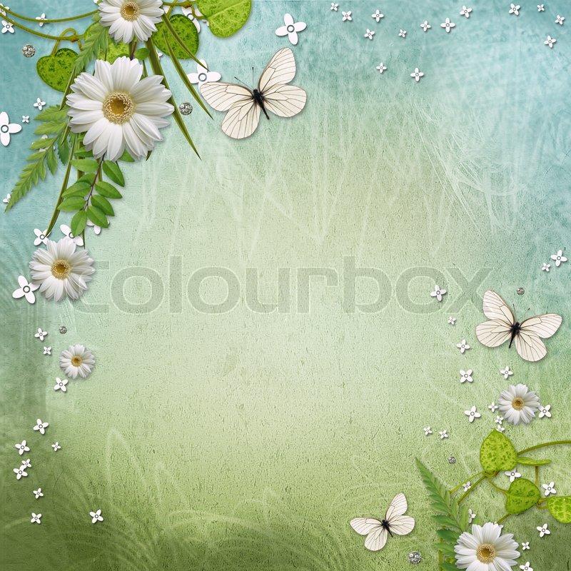 Papier -Rahmen mit schönen Gänseblümchen und Schmetterling ...