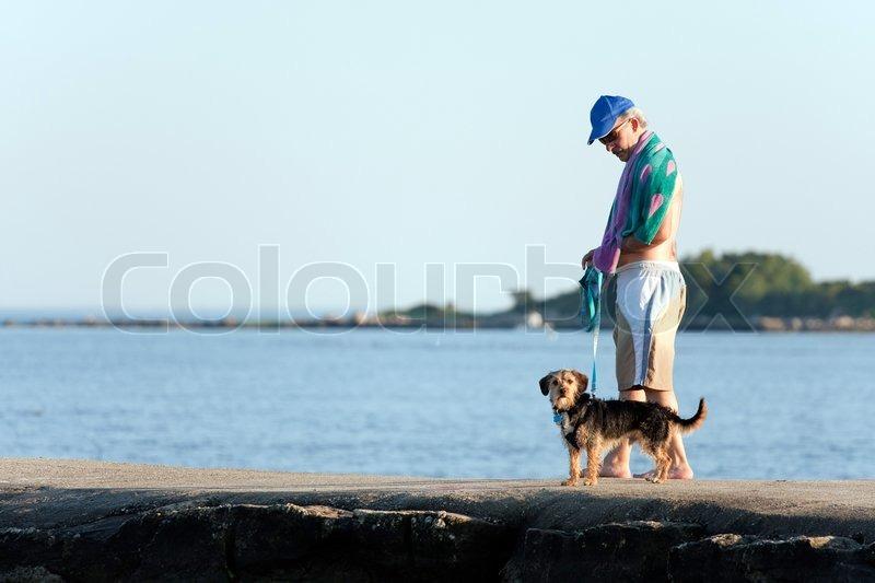 A Middle Aged Man Walks A Cute Borkie Stock Photo