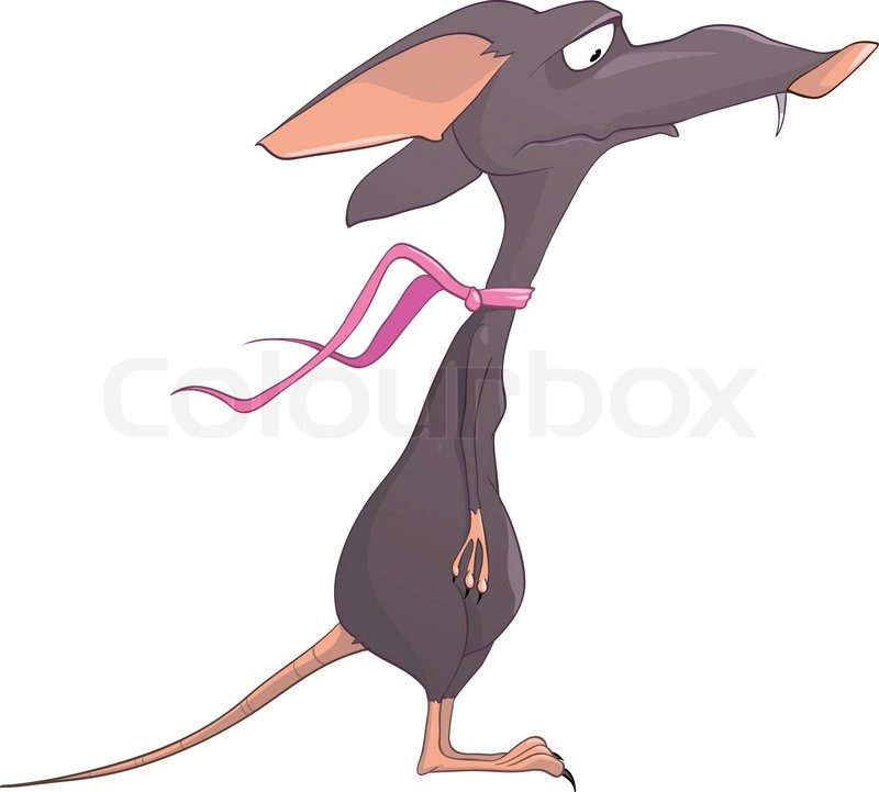 Cartoon Character Rat Isolated on White Background  Stock Vector