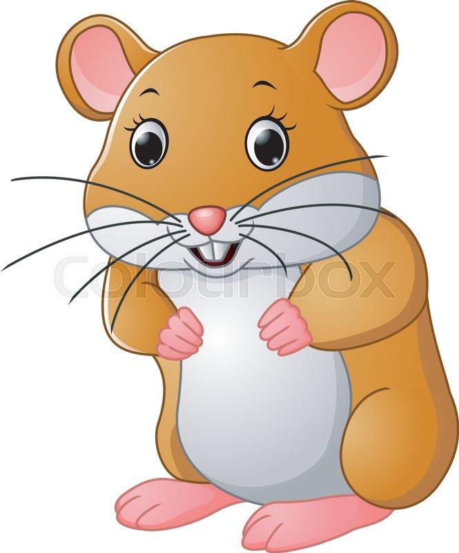 illustration of cute hamster cartoon stock vector colourbox