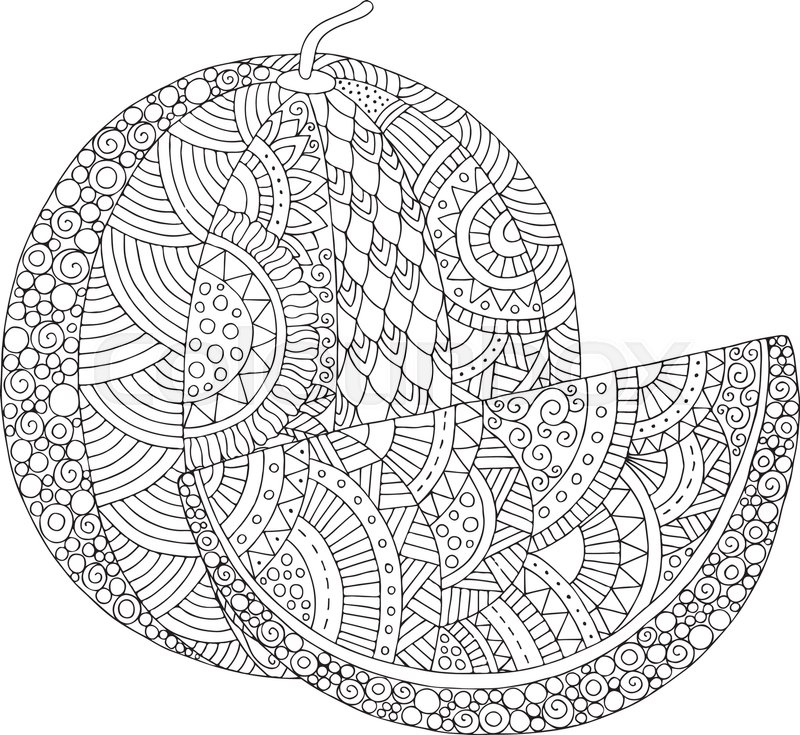 Vector Hand Drawn Watermelon Illustration For Adult Coloring Book Freehand Sketch Anti Stress Page With Doodle And Zentangle