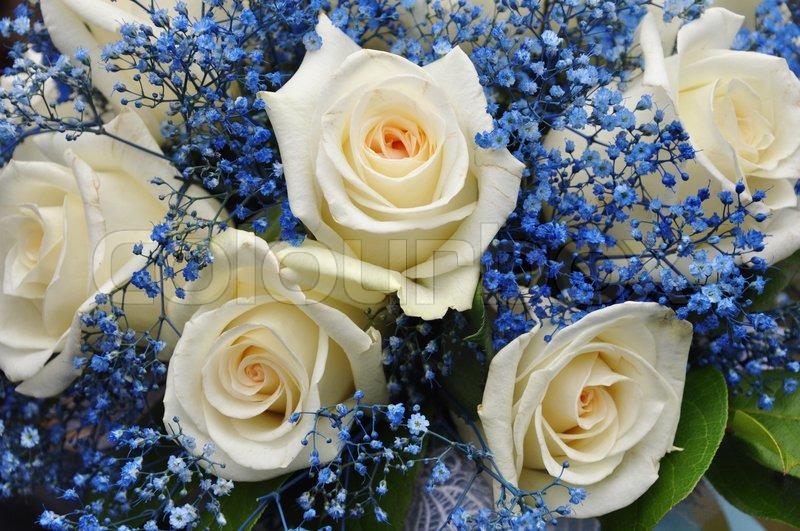 Hochzeit Bouquet Mit Weissen Rosen Und Stockfoto Colourbox