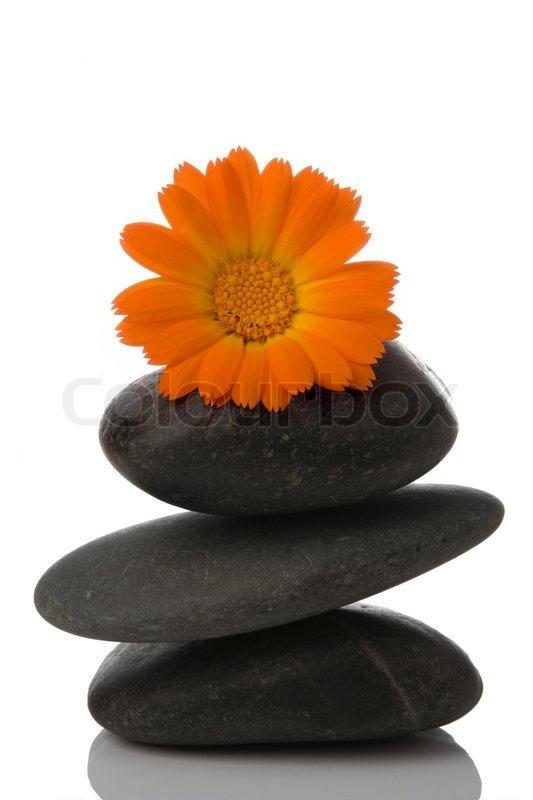 Orange And White Marble Slab : Spa stein und orange blumen auf weißem hintergrund stock