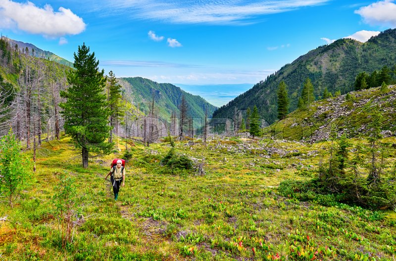 Woman with a backpack going up mountain trail . Eastern Sayan. Russia, stock photo