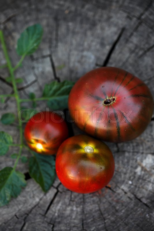 Organic Black tomato- kumato on the wood background, stock photo