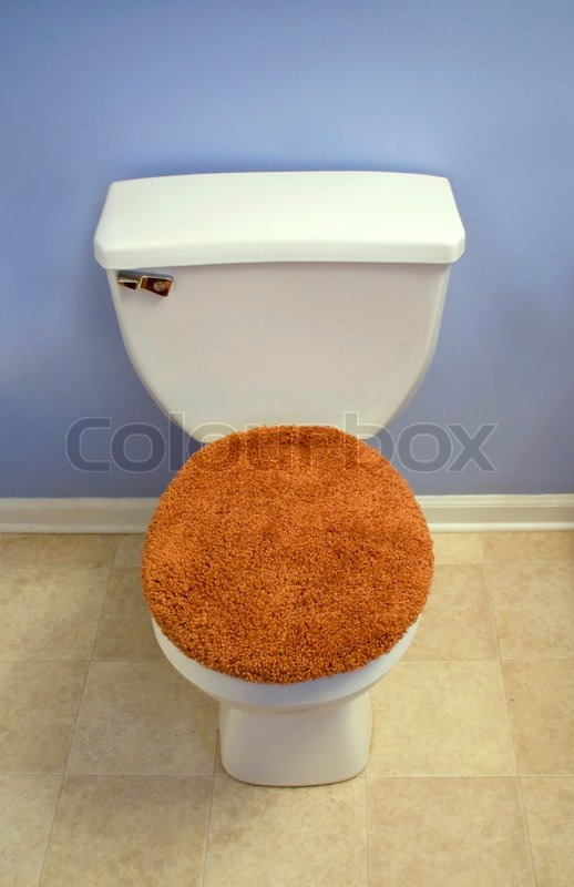 Toilet Bowl Lid