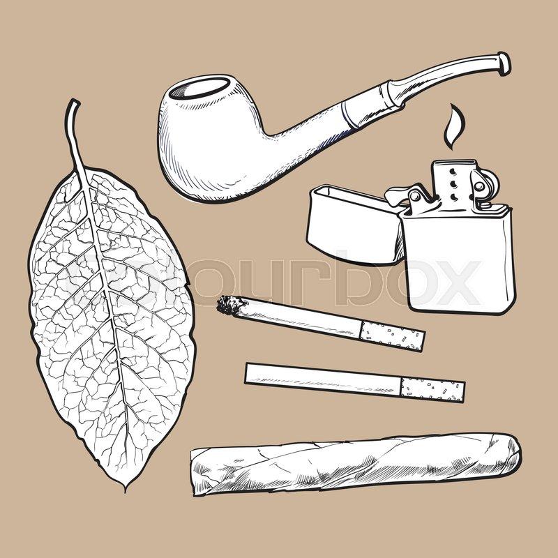 Smoking Pipe Lighter Cigar Cigarettes And Tobacco Leaf Sketch