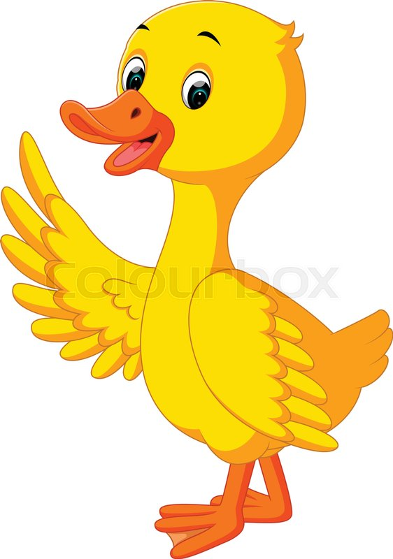 duck cartoon stock vector colourbox rh colourbox com cartoon baby duck pictures cartoon duck pictures free