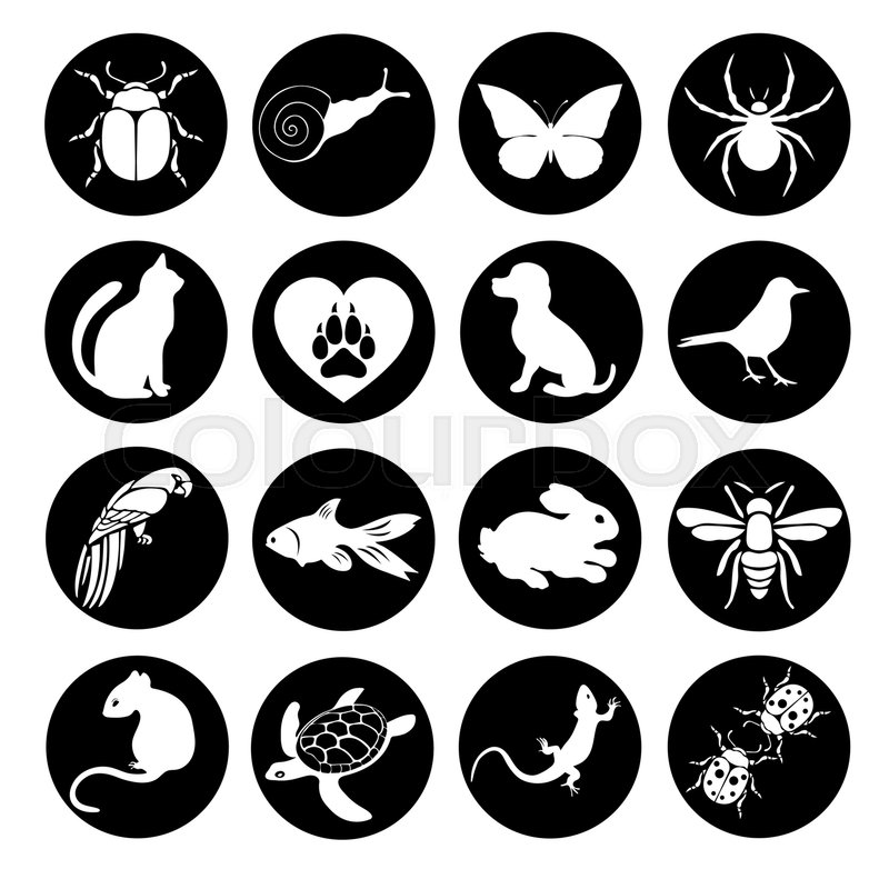 Vector set flat web icons animals and insects. Black and white icons ...