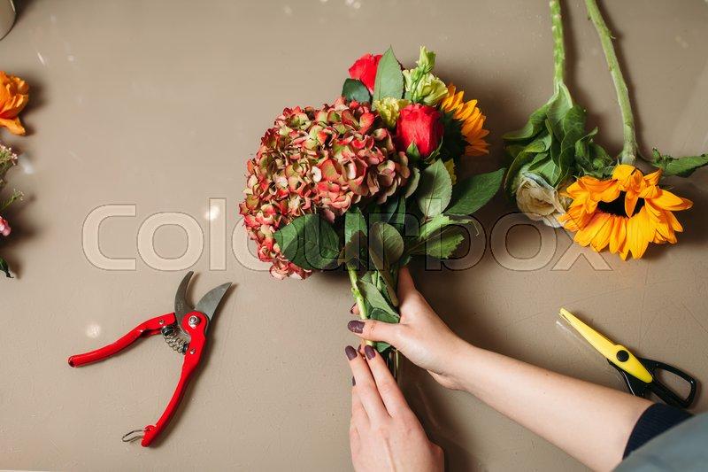 Florist hands cutting rose with garden scissors. Florist creating decorative flower bouquet, stock photo