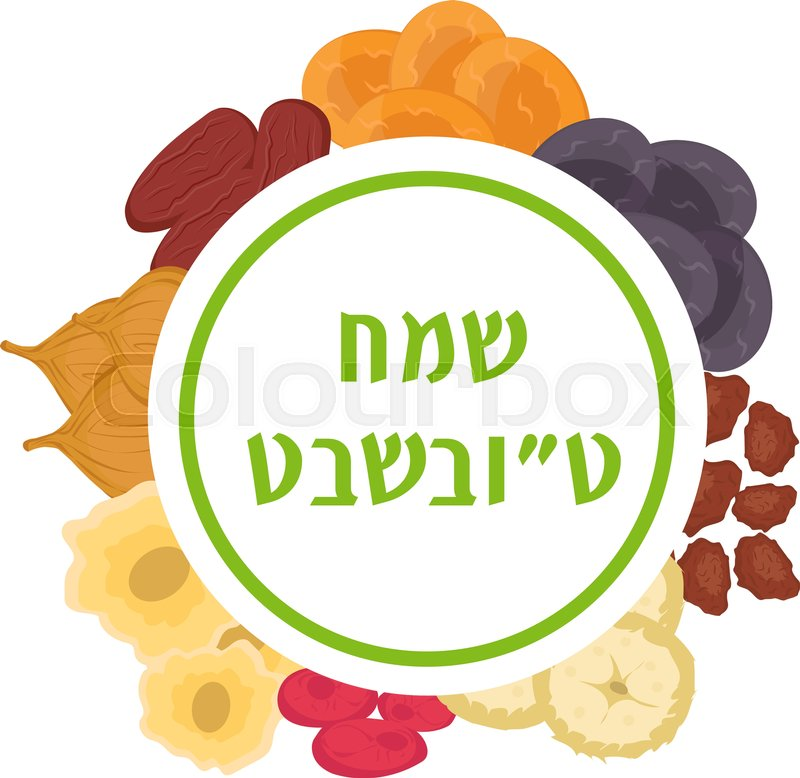 jewish holiday new year of trees dried fruits template for your design vector illustration stock vector colourbox