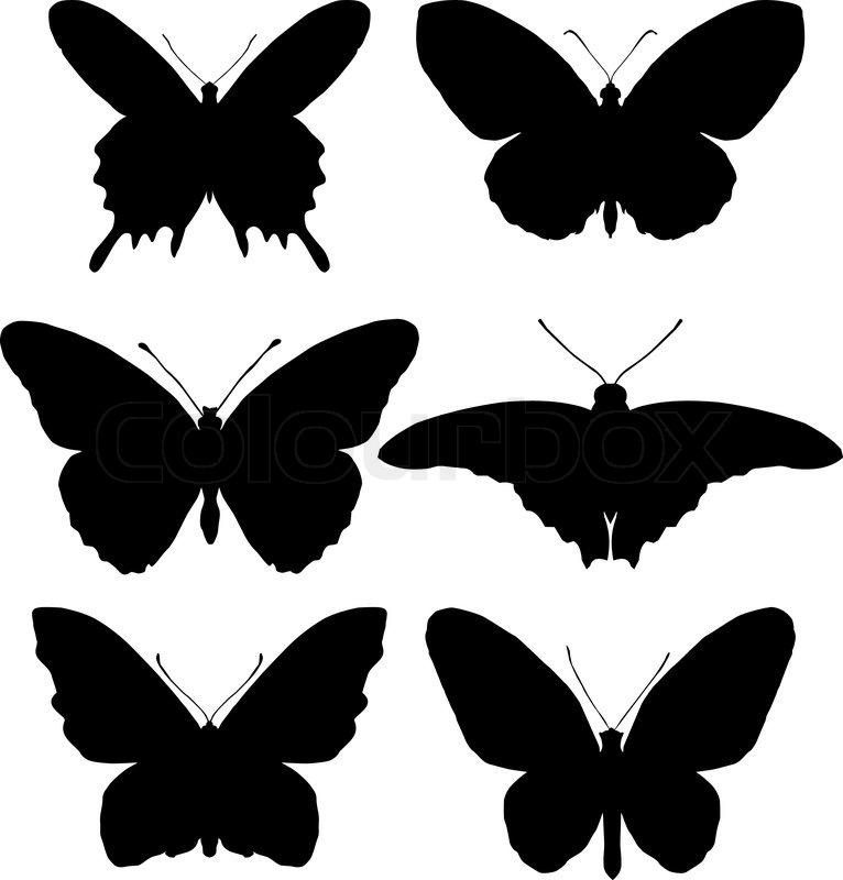 Ungewöhnlich Schmetterling Zyklus Arbeitsblatt Bilder ...