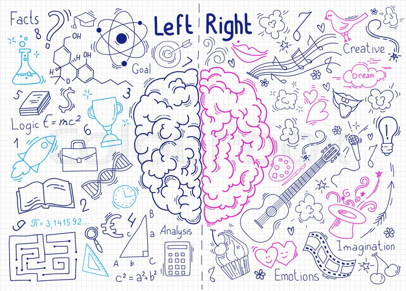 Concept Of The Human Brain Left And Right Hemisphere Of Brain