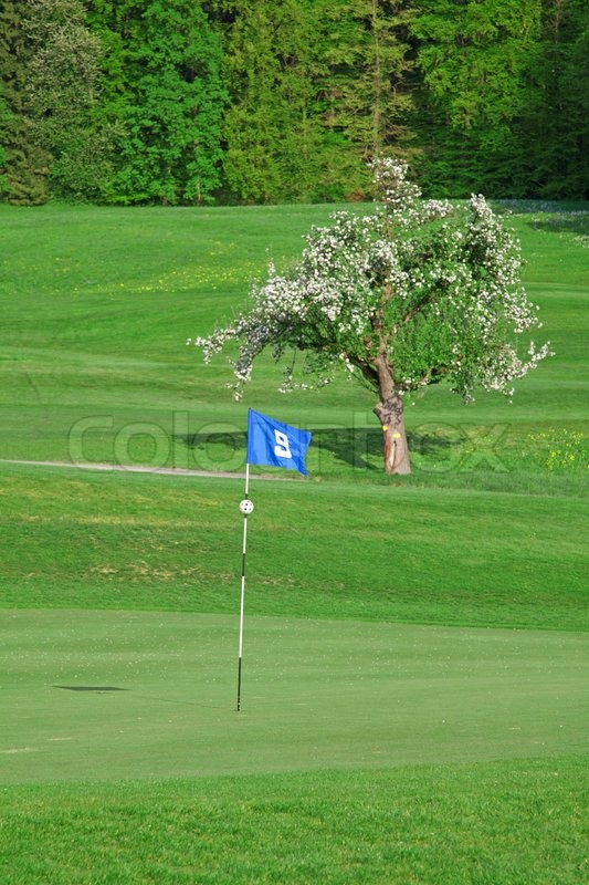 9th flag on the golf course, stock photo