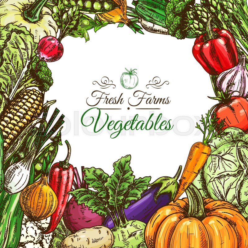 vegetables poster or vegetarian menu design template fresh farm