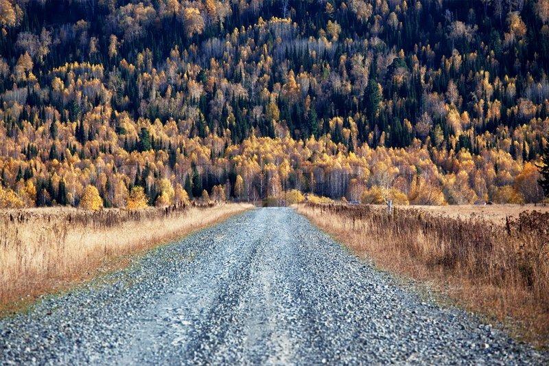 Old country road in autumn mountain forest, Altai mountains, Kazakhstan, stock photo