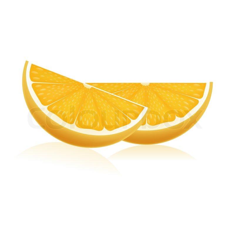 Illustration of orange slices on     | Stock vector | Colourbox