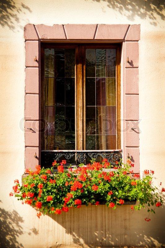 Einzelnes Fenster mit Blumenkasten | Stock Bild | Colourbox