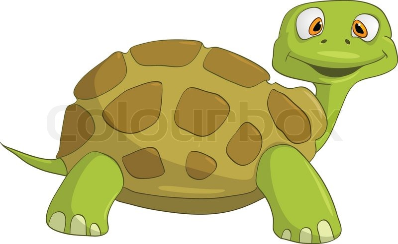 Cartoon character turtle isolated on white background