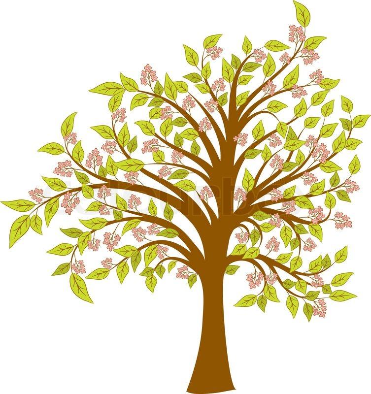 Frühling Blühenden Baum Vektorgrafik Colourbox