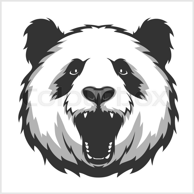 portrait of panda aggressive face bear vector illustration stock