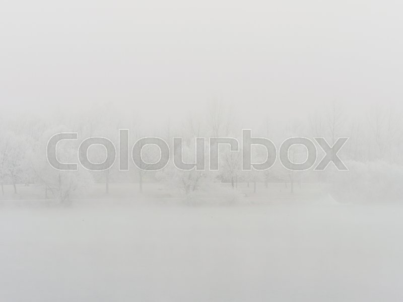 Landscape with trees and rime in cold weather in winter. typical winter image as a background, stock photo