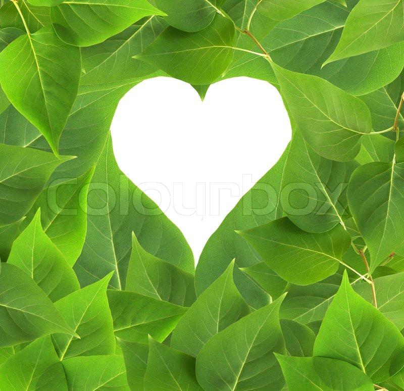 natur koncept heart form til dine billeder eller tekst p. Black Bedroom Furniture Sets. Home Design Ideas