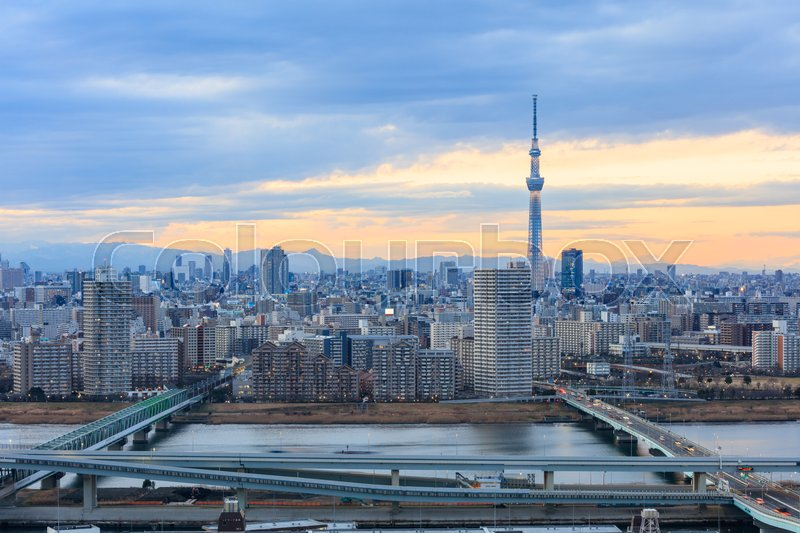 Tokyo city view and Tokyo landmark Tokyo Tower in evening , Tokyo city is one of the 47 prefectures of Japan, stock photo