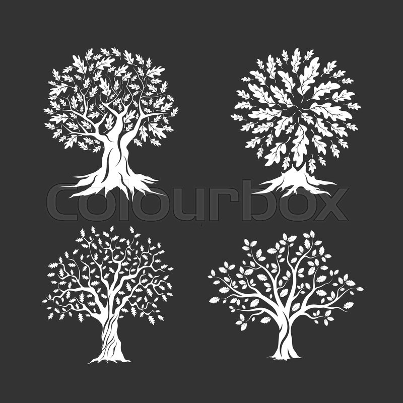 Beautiful Oak Trees Silhouette Set Isolated On Dark Background Web Infographic Modern Vector Sign Premium Quality Illustration Logo Design Concept