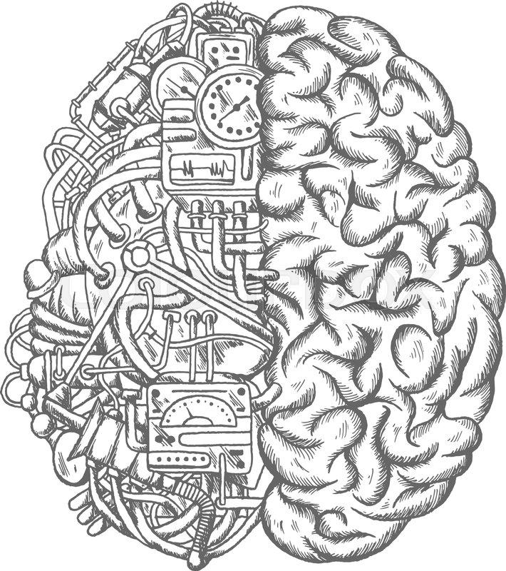 brain mechanism sketch vector icon  human brain half of