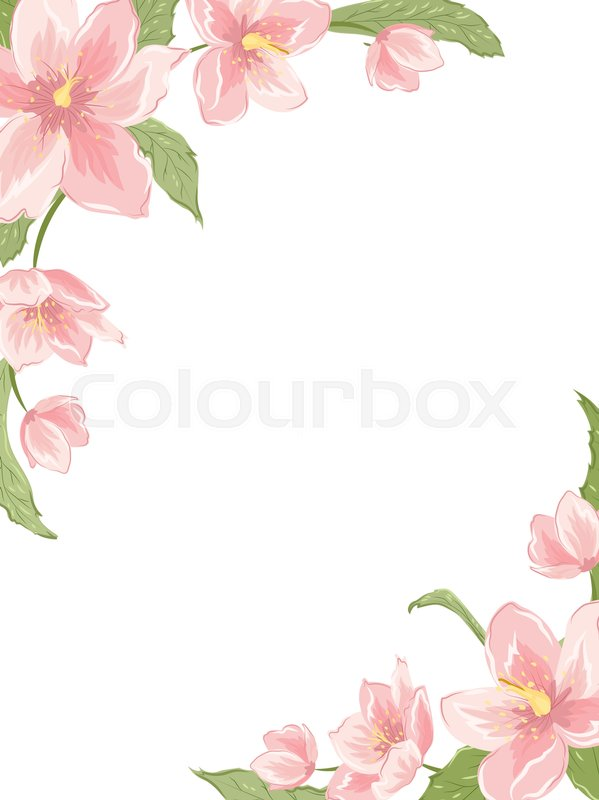 Corner Frame Template With Sakura Magnolia Hellebore Flowers On White Background Vertical